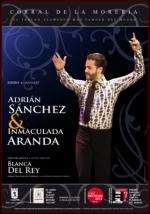 espectaculo-flamenco